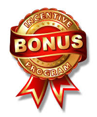 Incentive Bonus Program